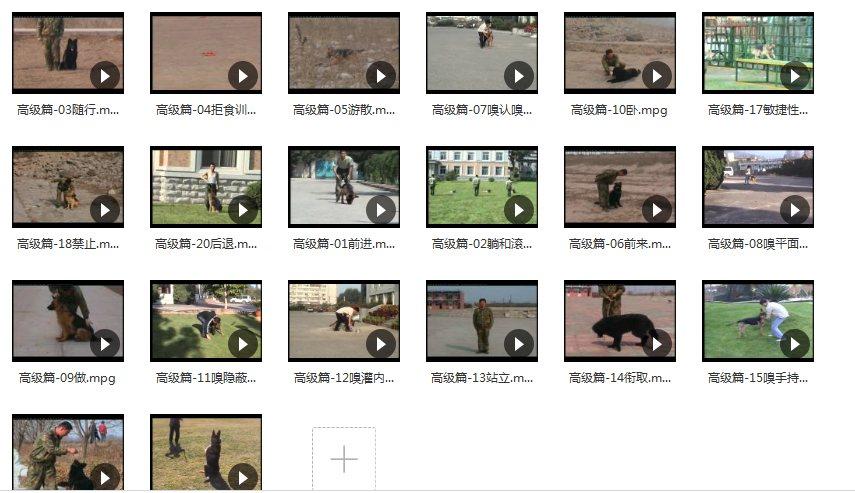 训狗视频教程免费下载,百度云网盘资源!(史上最全)