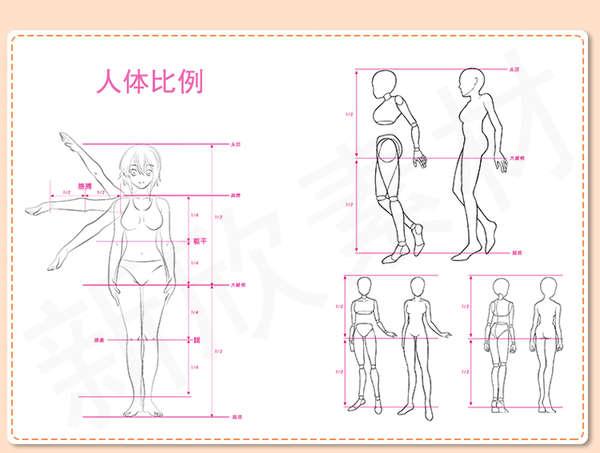 【漫画教程】动漫人物绘画教程 百度网盘下载(超全高清画质)